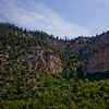 Forest Canyon Photograph 14