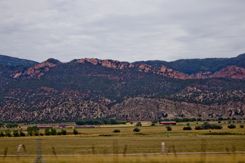 Forest Mountain Photograph 5