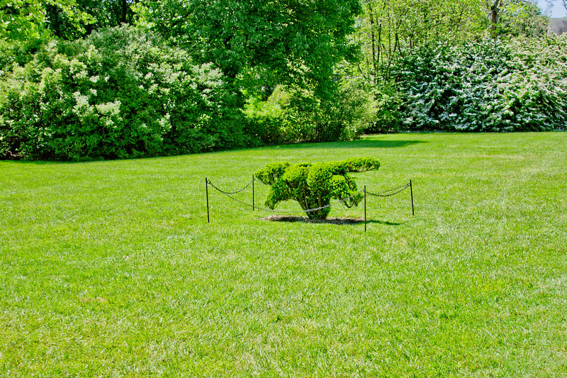 Topiary Gardens 1