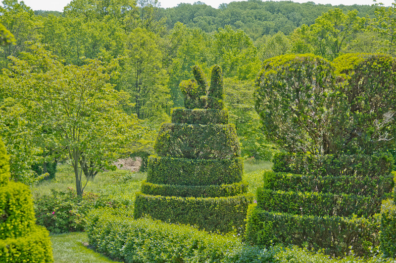 Topiary Gardens 19