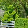 Topiary Gardens 3