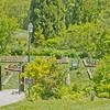 Topiary Gardens 50