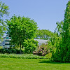 Topiary Gardens 4