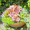Topiary Gardens 45