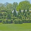 Topiary Gardens 32
