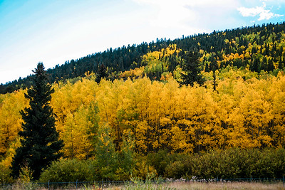 080927-ColorfulColorado (1014)-11