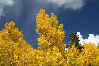 080927-ColorfulColorado (1081)-11