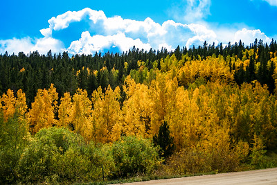 080927-ColorfulColorado (1020)-11