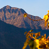090926_17_MT_GNP-Edit-1