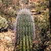 160227_AZ_Tucson_109-1
