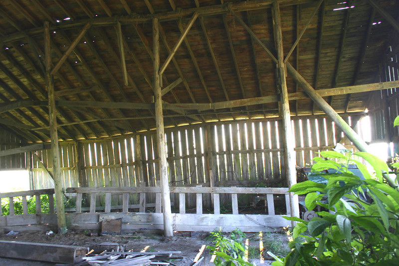 A barn in the Skagit Valley that once protected harvested crops is now home to wild growth