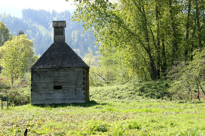 This Hopshed was built in the 1850s and named a County landmark by King County one hundred years later. Hops were a major industry in the Snoqualmie Valley.