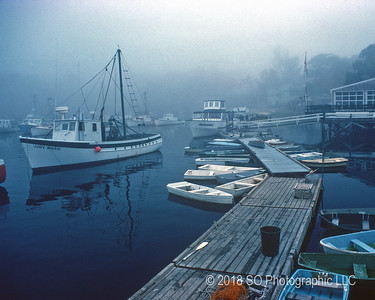 Misty Morning at Barnacle Billys