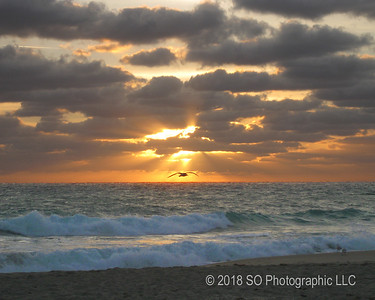 Sunrise at Juno Beach