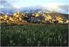Castle Rocks State Park, Almo, Idaho