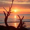 Graceful Dawn