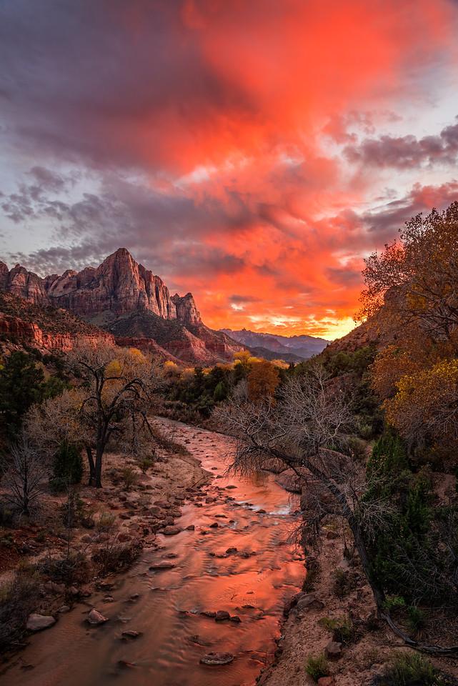 Watching the Watchman  |  Zion, Utah