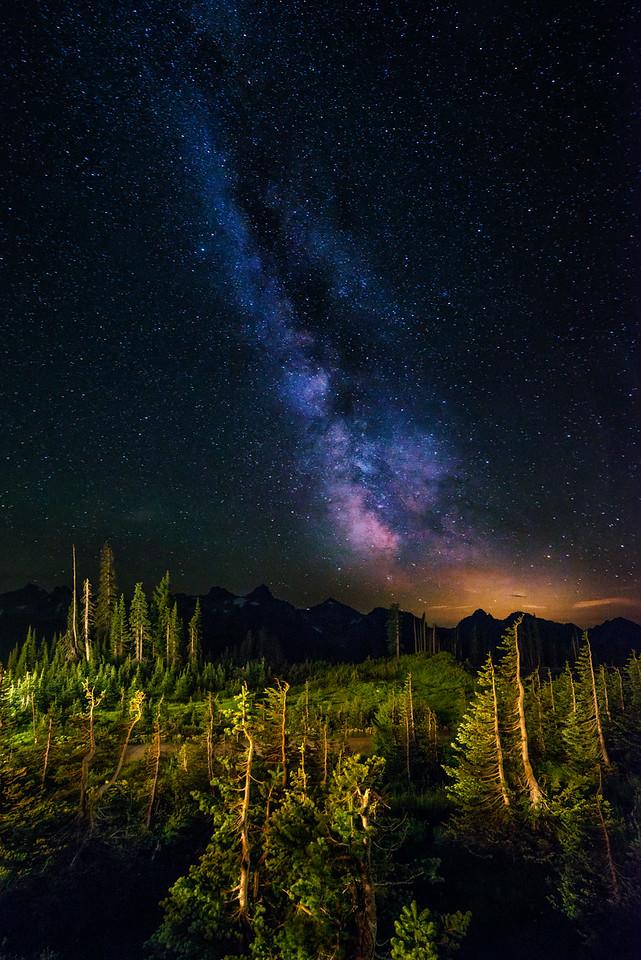 Milky Way Paradise  |  Mt Rainier, Washington