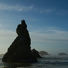 Howling Dog Rock, Bandon Oregon