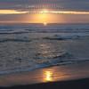The Golden Ocean - Gold Bluff's Beach