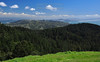 Sunny Springtime City View<br /> San Francisco, CA