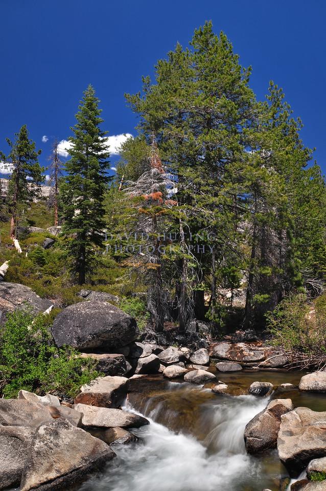 Glorious Sierra Afternoon