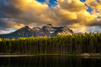 Sunset over deep forest along the Herbert Lake in Banff National Park, Canada