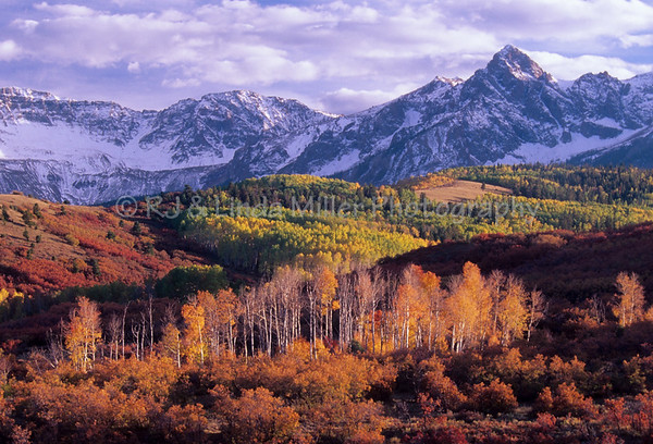 Mountains of Uncompahgre National Forest, Colorado, Ouray
