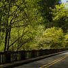 Columbia River Gorge Highways - Beautiful old bridge