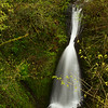 Beautiful waterfall at Shepperd's Dell, Oregon