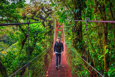Tourist walking on a suspension bridge in Monteverde Cloud Forest, Costa Rica