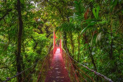 Red suspension bridge in Monteverde Cloud Forest, Costa Rica
