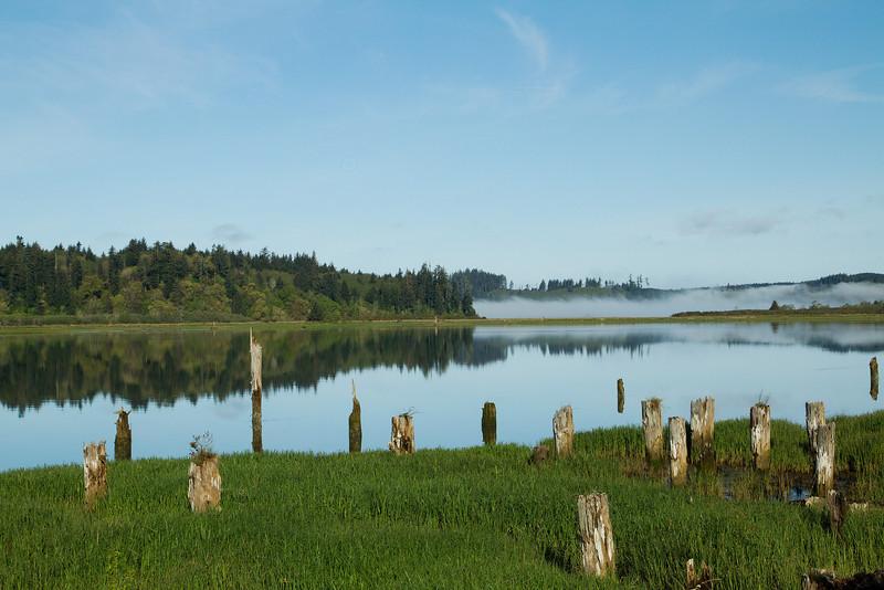 Gardiner Boat Launch area, Umpqua River Oregon