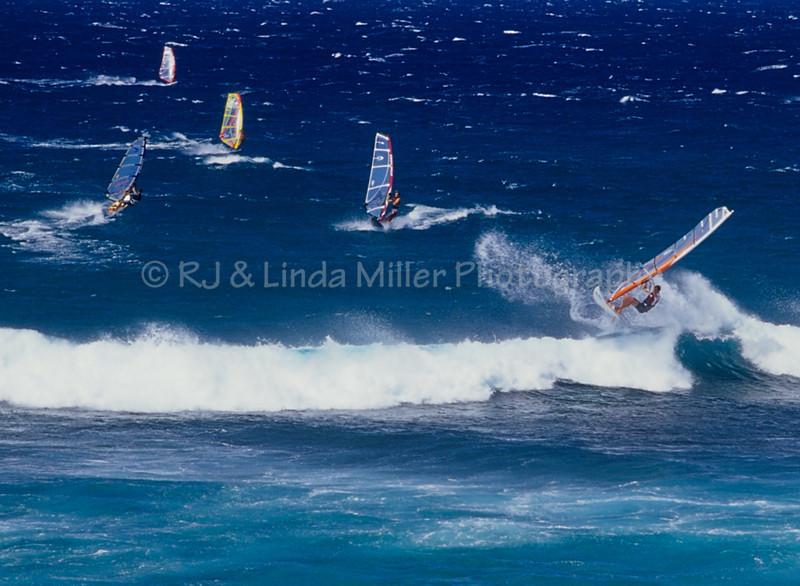 RJLM_WI  _ 104541 Hawaii  2013-12