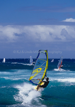 Sailboarders Riding Waves, Ho'okipa Beach Park, Maui, Hawaii