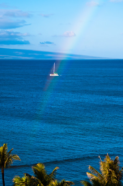 Rainbow, Maui, Hawaii