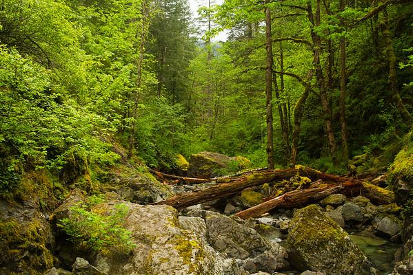 River near Hemline Falls, Oregon
