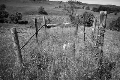 Cowboy Grave. Montana
