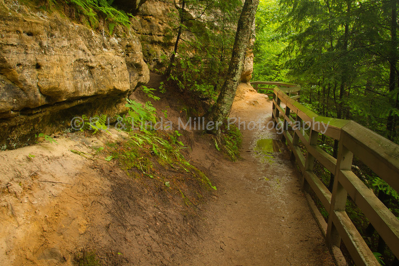 Trail to Munising Falls, Alger County, Upper Peninsula, Michigan