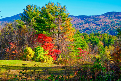 New England, Fall, Autumn, Foliage