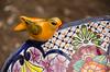 Bird on Mexican Ceramic Bird Bath