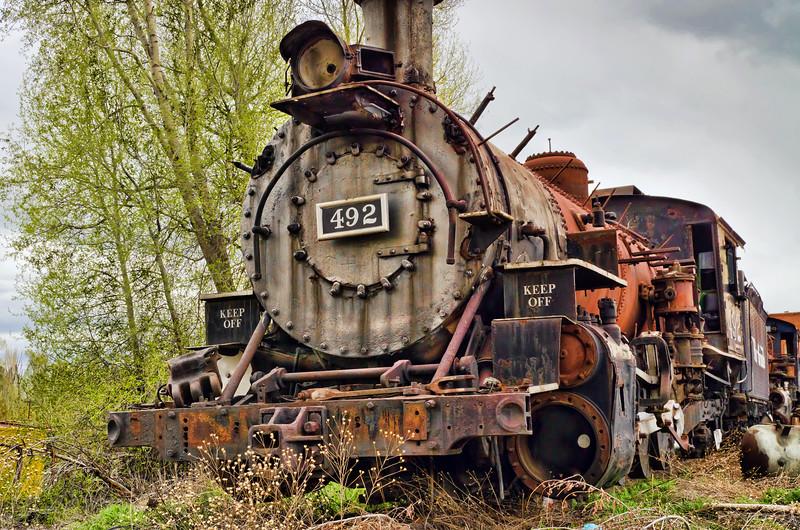 Train #492, Steam Locomotive