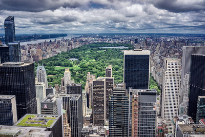 Another view of the central park from the top of the Rock
