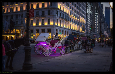 The colorful horse carriages