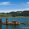 The final remains of the Mary D.Hume shipwreck, Oregon