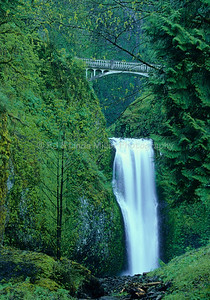 Multnomah Falls, Columbia River Gorge, Multnomah County, Oregon, USA