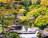 Seattle Japenese gardens
