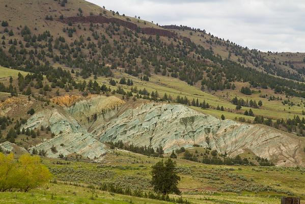 Amazing Green Painted Hills, Oregon