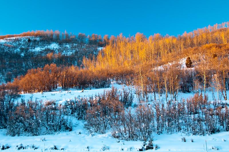 Winter scene, Utah
