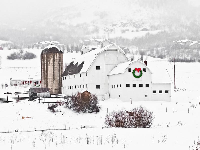 White Barn 2